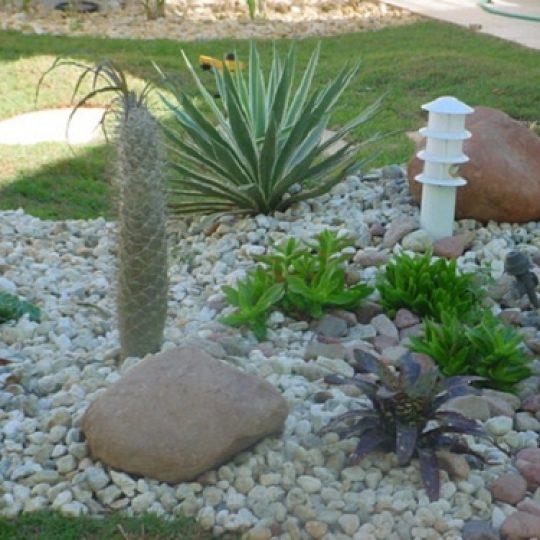Jardim com pedras