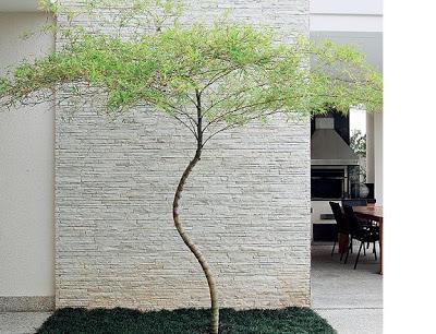 Revestimento de parede em canjiquinha