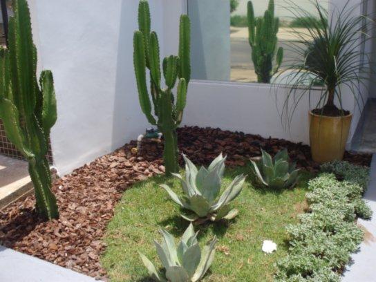 Jardim 4