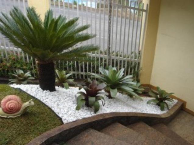Jardim 11