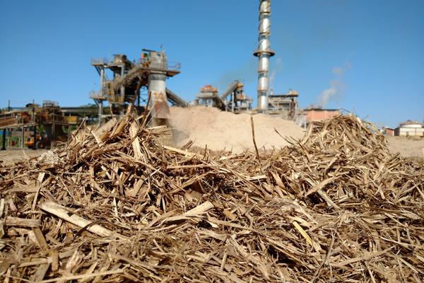 fonte de eneriga biomassa