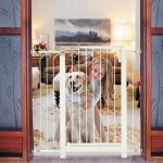 Grade para Cachorro: Modelos resistentes e bonitos