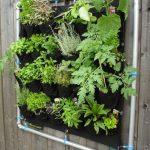 Como fazer uma Horta Vertical Suspensa: Passo a Passo