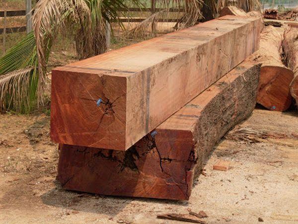 madeiras indicadas para telhados