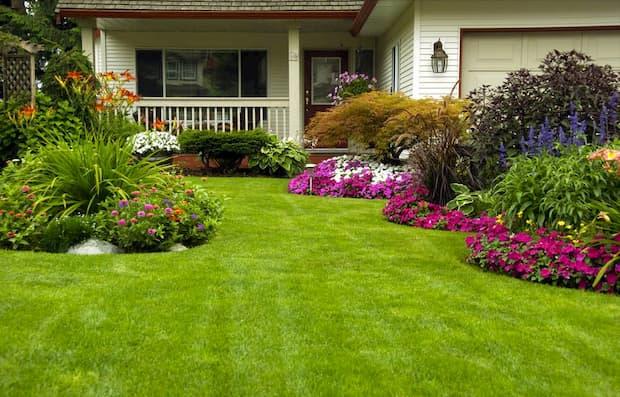 modelo de jardim decorado
