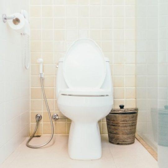 como assentar azulejo em banheiro