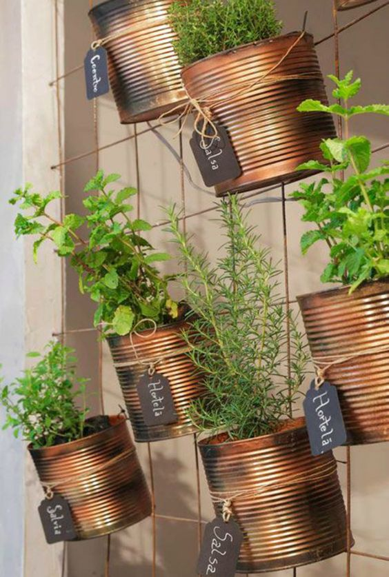 como fazer horta dentro de casa
