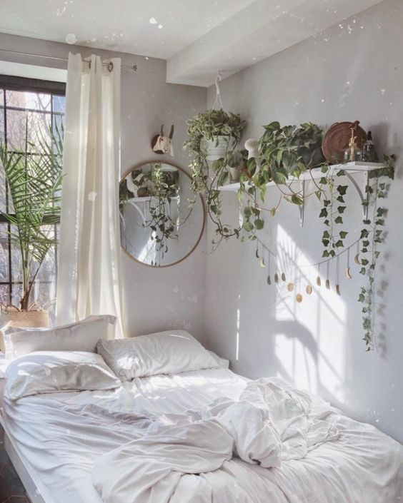 decoração com plantas em casa