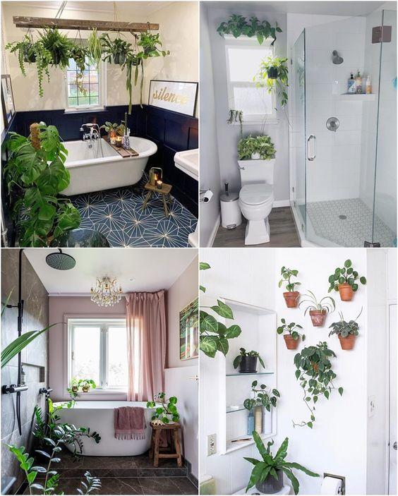 decoração com plantas em casa banheiro