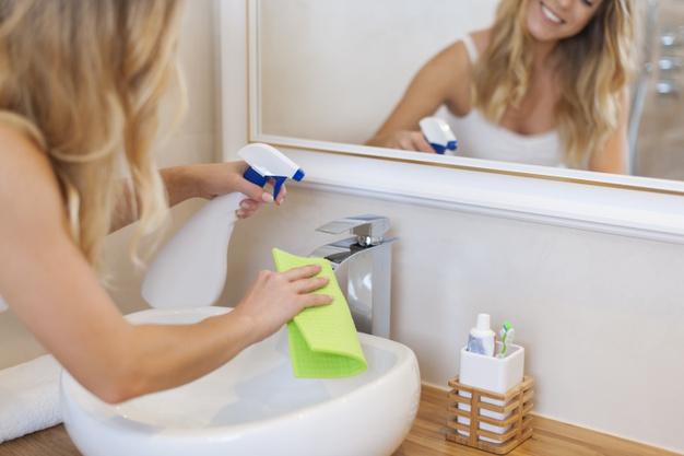 como evitar insetos no banheiro