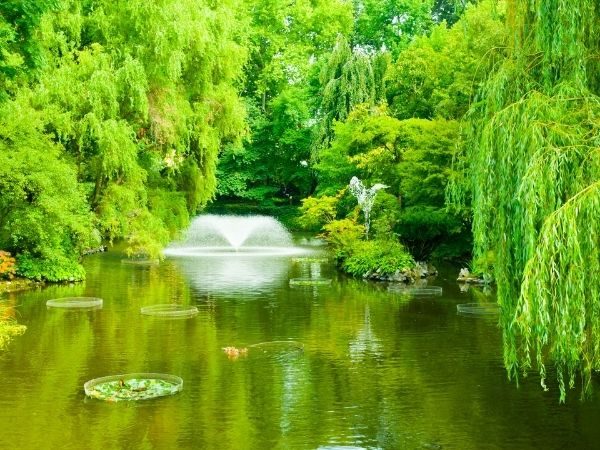 como fazer um lago artificial